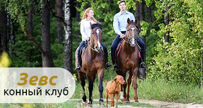 70% скидка на индивидуальное обучающее занятие по верховой езде, катание на пони и экскурсию для детей, фотосессию с лошадьми, прогулку верхом на ездовой лошади за 50 рублей!